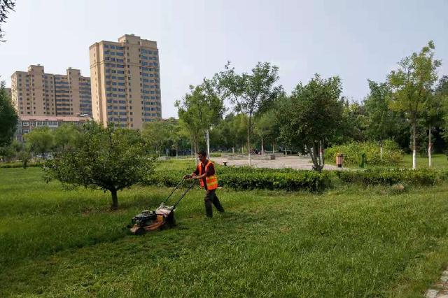 高阳:提升园林绿化水平 为旅发大会助力添彩