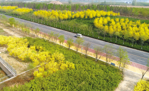 彩色的道路让人心旷神怡。