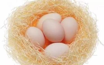 吃雞蛋常犯8個錯