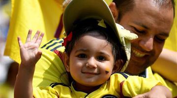 世界杯球场上萌态十足的小球迷