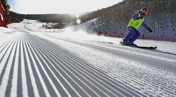 滑雪爱好者冬日享滑雪乐趣