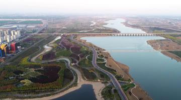滹沱河生态修复三期工程加紧推进