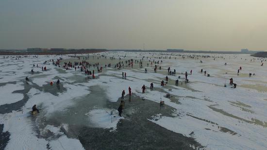 曹妃甸湿地冰钓
