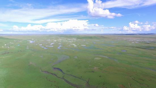 甘肃黄河首曲国际重要湿地(国家林业和草原局供图)