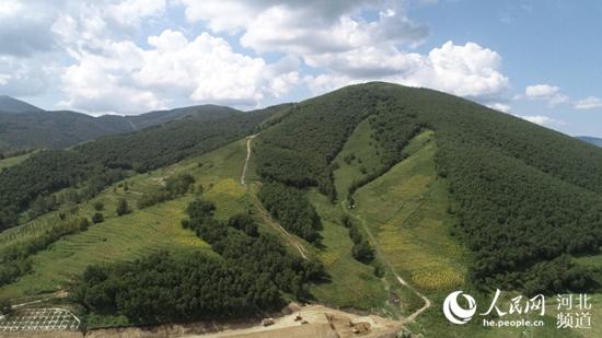 张家口市崇礼区造林绿化。 张家口市林业和草原局供图