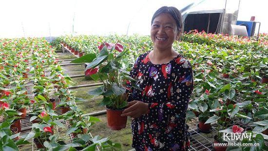 来自北京大兴的花农万苹落户土楼胜利村,承包了3个高标准鲜花温室大棚。 记者 吴新光 摄