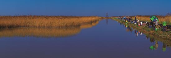曹妃甸湿地休闲垂钓