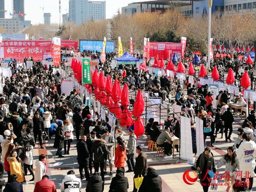 图为2月16日,河北省2019年规模最大的毕业生就业市场。杨文娟 摄