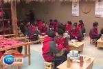 石家庄青少年现代农业体验中心向社会开放