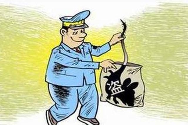 辛集男子盗窃成瘾 释放3个月后又疯狂作案十多起