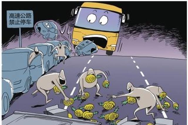 沧州高速上一货车掉下一筐黄瓜 有人帮忙有人抢瓜