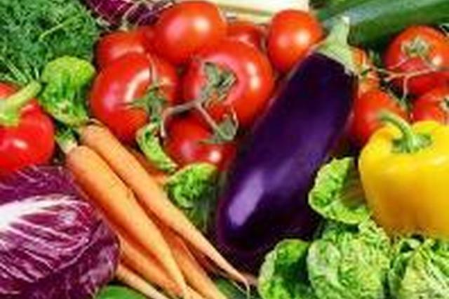 雨雪天气石家庄蔬菜供应充足 价格稳定