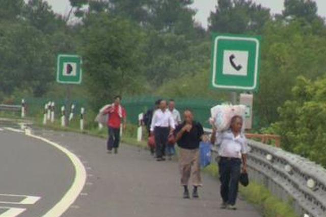 沧州高速几十人结伴回家 把高速路当成步行街