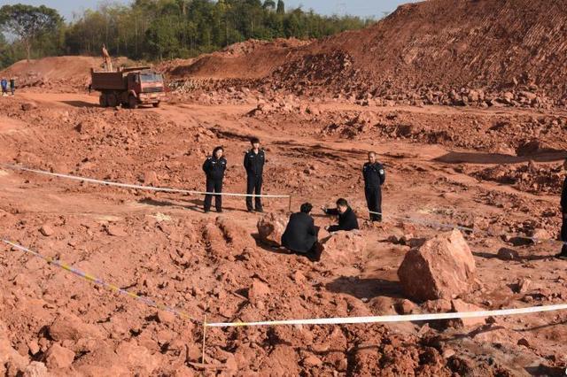 江西一工地发现20余枚恐龙蛋化石 距今1.3亿年