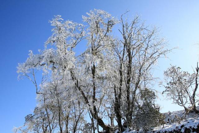 冬日的九鼎山银装素裹如同梦幻世界