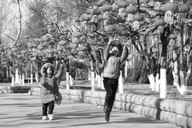 石家庄公园广场张灯结彩迎新春 悬挂灯笼2万多个
