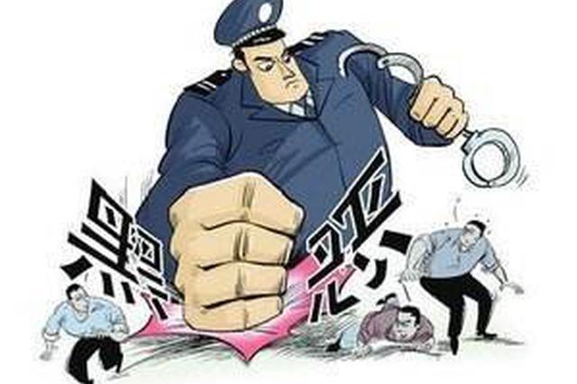 邢台公安重拳出击打掉4个犯罪团伙 大快人心