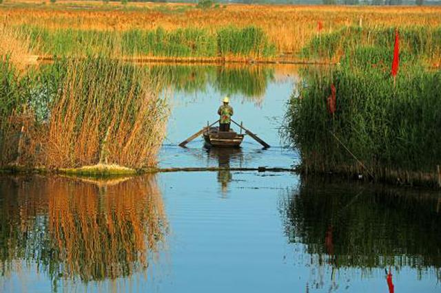 保定大力治理白洋淀上游流域生态 建好生态屏障