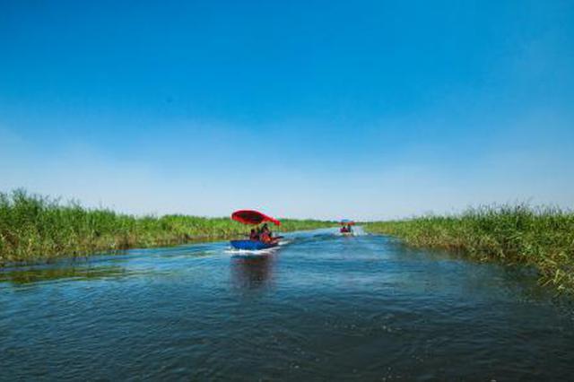 保定治理白洋淀上游流域生态 为雄安新区建好生态屏障