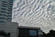 大雨过后 郑州天空出现棉花糖
