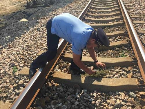 乘客手机从火车厕所掉地面 民警徒步10公里找回
