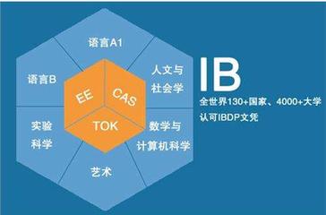 IB课程 图片来自互联网