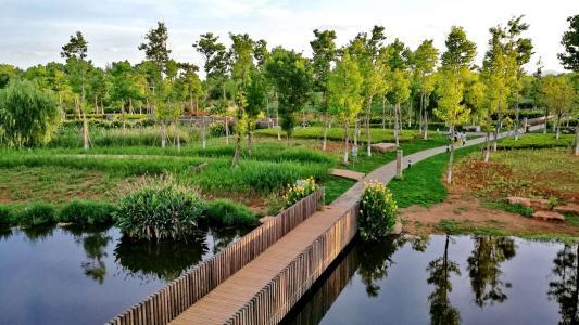 郑州打造大都市生态区 到2022年建3个省级以上湿地公园