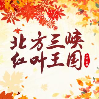2019河南焦作青天河红叶节开幕