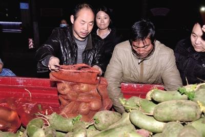 商丘老人郑州街头卖萝卜救孙子 有人掏1000啥也不要