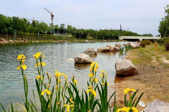 ●双鹤湖中央公园摄影:薛忠良