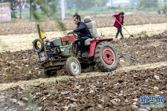 河南滑县:整理土地 备播小麦(图)