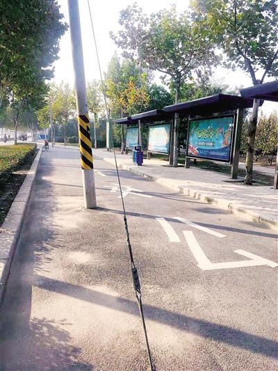 荆胡村大学南路西侧公交站