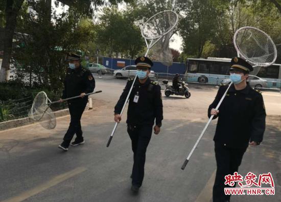 郑州金水区养犬办开展不文明养犬集中整治