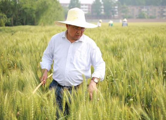 河南科技学院茹振钢教授入选全国