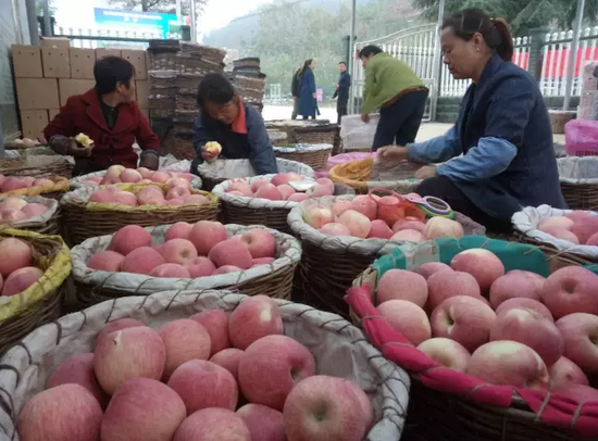 中国农业品牌目录公布 16个河南特色农产品入选