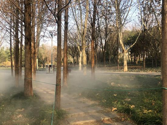 """郑州植物园引入雾森系统,云雾缭绕宛如""""仙境"""""""