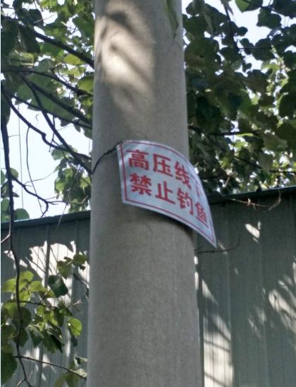 """事后,电力部门挂了""""禁止钓鱼""""的牌子"""