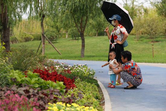不同颜色的花卉组合在一起极富层次感,人们沉浸在迷人的景色里,忘记了天气的炎热。