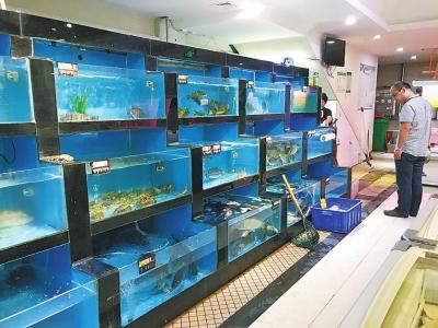 郑州一家超市内,各种水产很丰富,唯独没有小龙虾。
