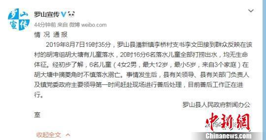 图为罗山县委宣传部官方微博通报 官微截图 摄