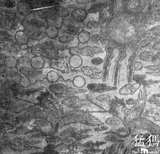 墓顶后上方描绘的各种飞禽走兽。