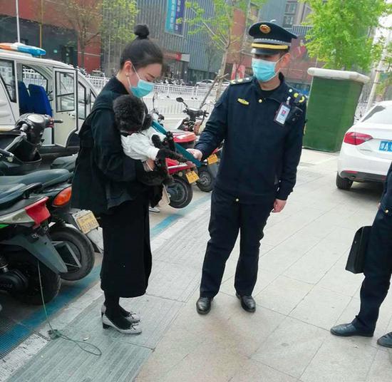 @郑州市民 违规养犬、遛犬、不年检将面临3000元处罚