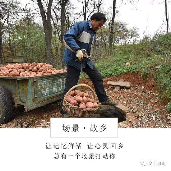 组图:故乡的红薯窖 一口红薯窖用了六七十年