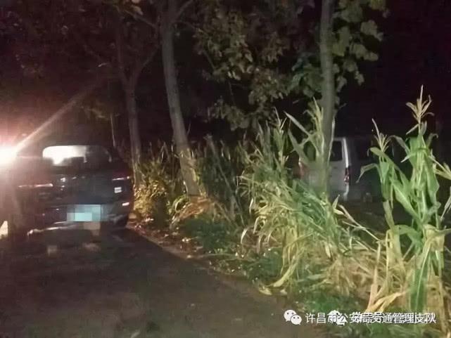 禹州男子酒后驾车撞到路边线杆 现场态度恶劣满嘴脏话