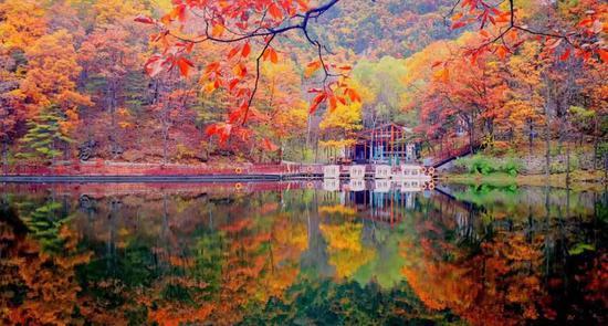 最后的晚秋,在白云山品读与秋天有关的诗歌!