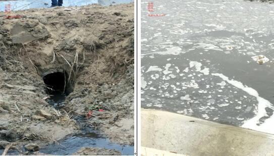 图为寨河一级水源保护区内存在排放口。图片来源:生态环境部网站