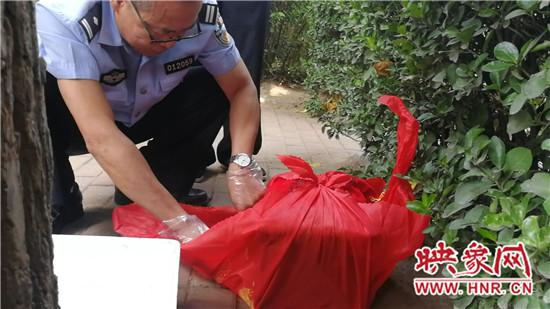 郑州游园内惊现骨灰盒吓坏市民
