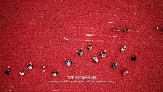 茹振刚,中国小麦专家