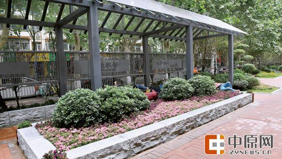 昨日中午,四五个人躺在伊河路嵩山路口一个小花园台阶上午睡。丁友明 图