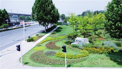郑州:园艺扮靓城市 绿地点缀街头(图)